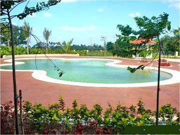FOR SALE: Lot / Land / Farm Cavite 16