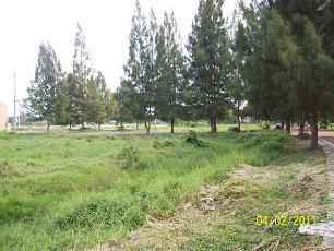 FOR SALE: Lot / Land / Farm Bulacan 14