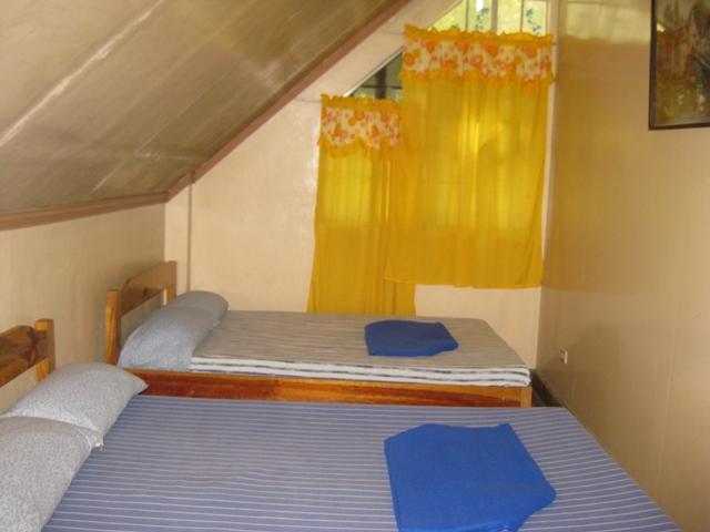 FOR RENT / LEASE: House Benguet > Baguio