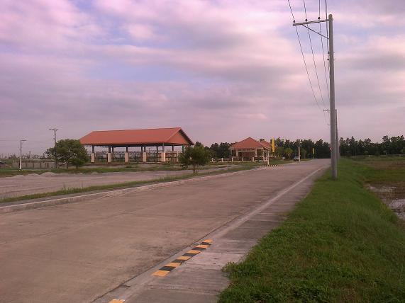 FOR SALE: Lot / Land / Farm Tarlac > Paniqui 11