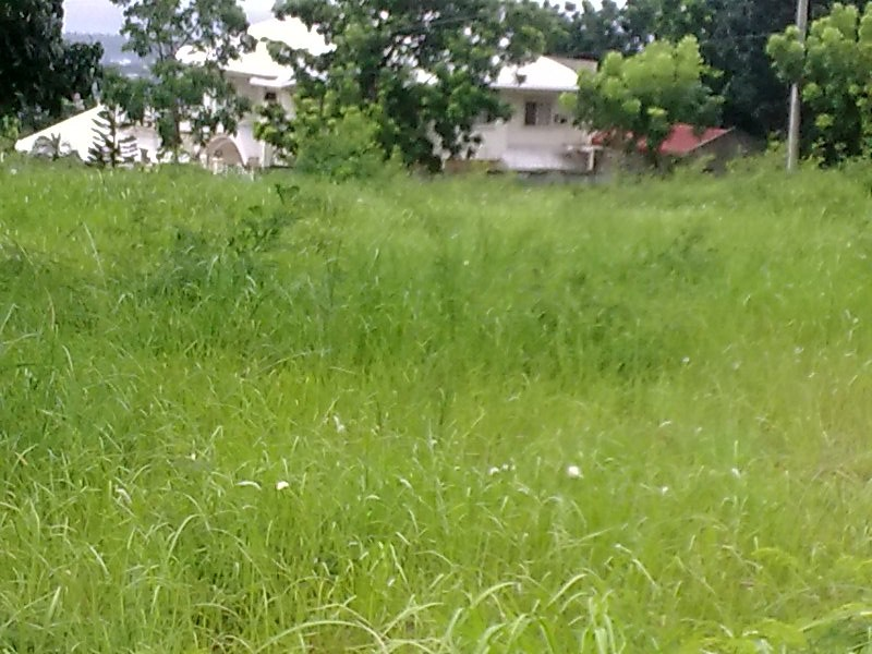 RESALE LOT @ VISTA GRANDE SUBD, PH 1 BLOCK 10, LOT 23, AREA 219sq.m.@ P 8,000/sq.m.  negotiable , Which is located Bulacao Talisay City, Cebu IT IS BEFORE REACHING CLUBHOUSE OF VISTA GRANDE, A flat of land and ready for housing, titled and already transfe