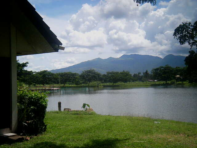 FOR SALE: Lot / Land / Farm Quezon > Other areas