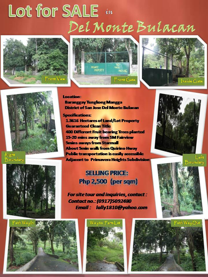 Lot property for sale in Tungkong Mangga