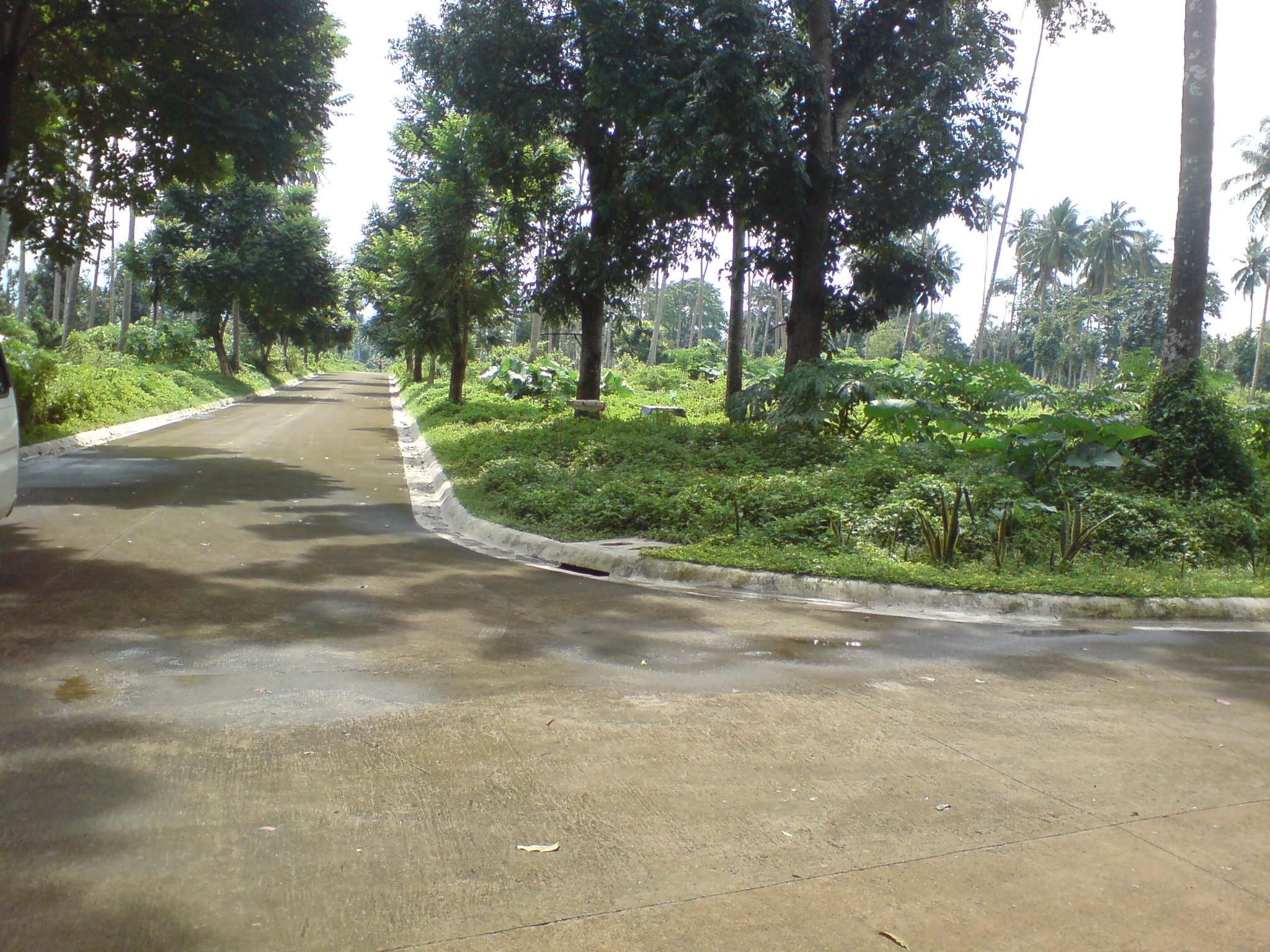 corner roads