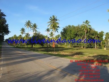 FOR SALE: Lot / Land / Farm Davao del Sur > Samal 4