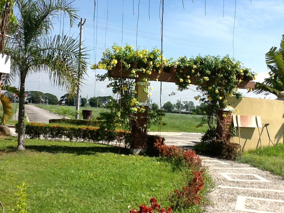 FOR SALE: Lot / Land / Farm Pampanga > Other areas 25