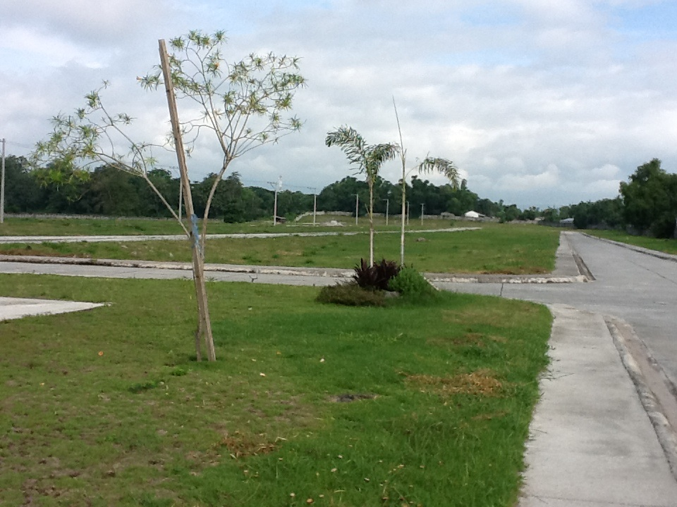 FOR SALE: Lot / Land / Farm Pampanga > Angeles City 9