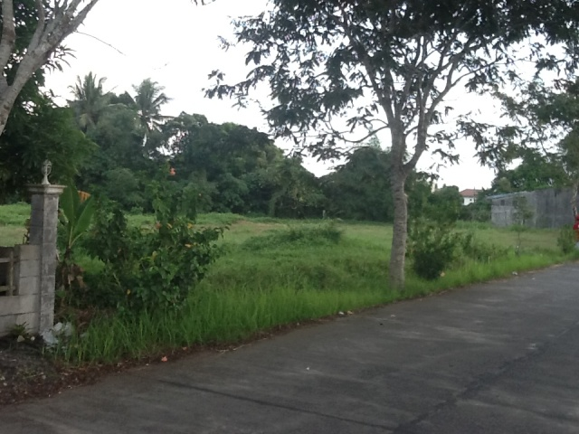 RESIDENTIAL LOT IN SAN FELIPE NAGA CAMSUR