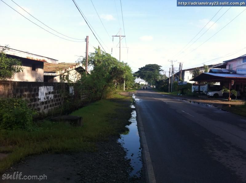 FOR SALE: Lot / Land / Farm La Union 2