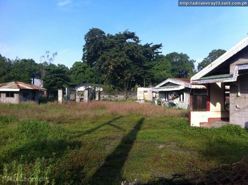 FOR SALE: Lot / Land / Farm La Union