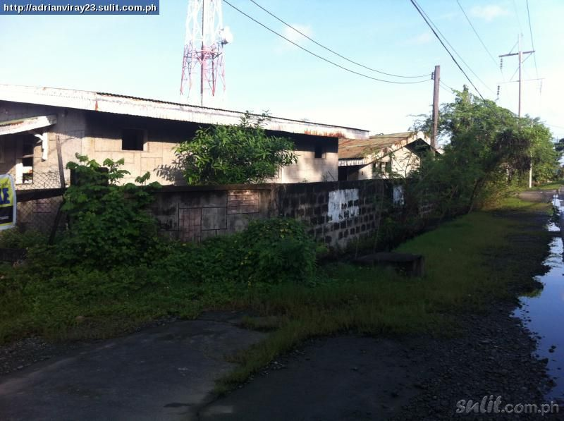 FOR SALE: Lot / Land / Farm La Union 1