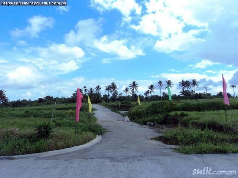 FOR SALE: Lot / Land / Farm Tagaytay 1
