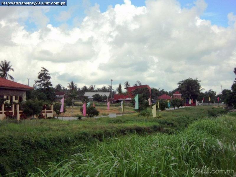 FOR SALE: Lot / Land / Farm Tagaytay 2