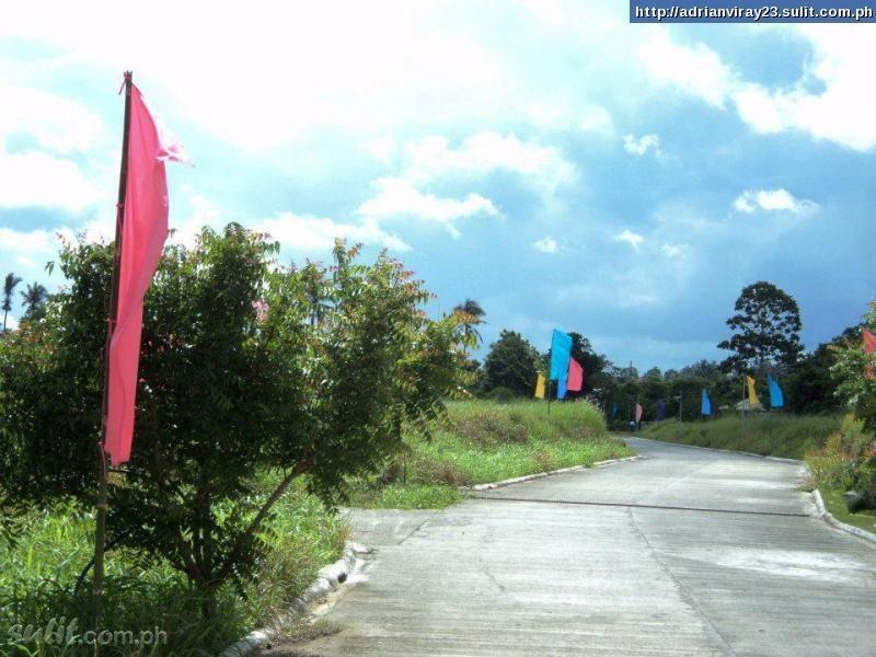FOR SALE: Lot / Land / Farm Tagaytay 3