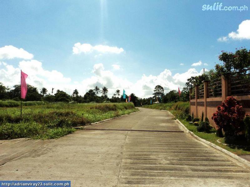 FOR SALE: Lot / Land / Farm Tagaytay 4