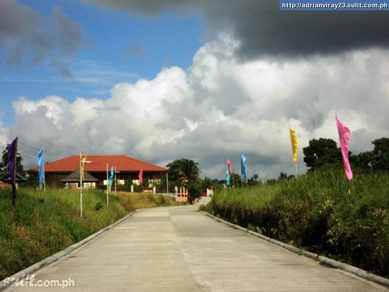 FOR SALE: Lot / Land / Farm Tagaytay 5