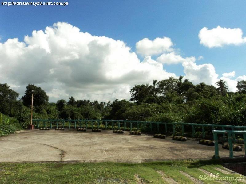 FOR SALE: Lot / Land / Farm Tagaytay 6