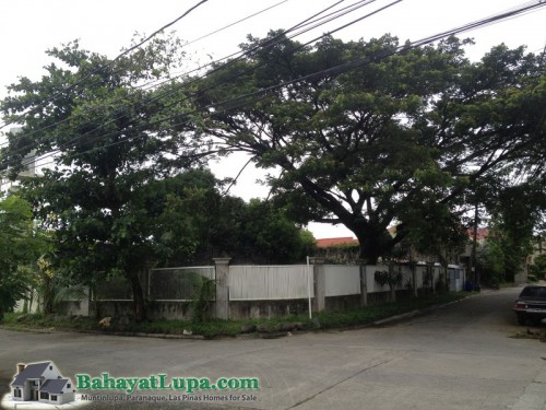FOR SALE: Lot / Land / Farm Manila Metropolitan Area > Paranaque