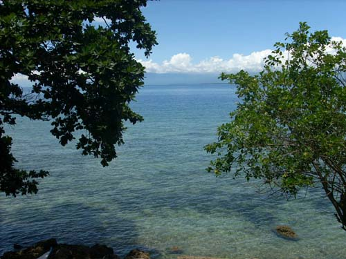 FOR SALE: Beach / Resort Davao del Sur > Samal 1