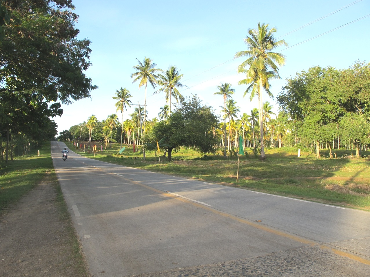 FOR SALE: Lot / Land / Farm Davao del Sur > Samal 5