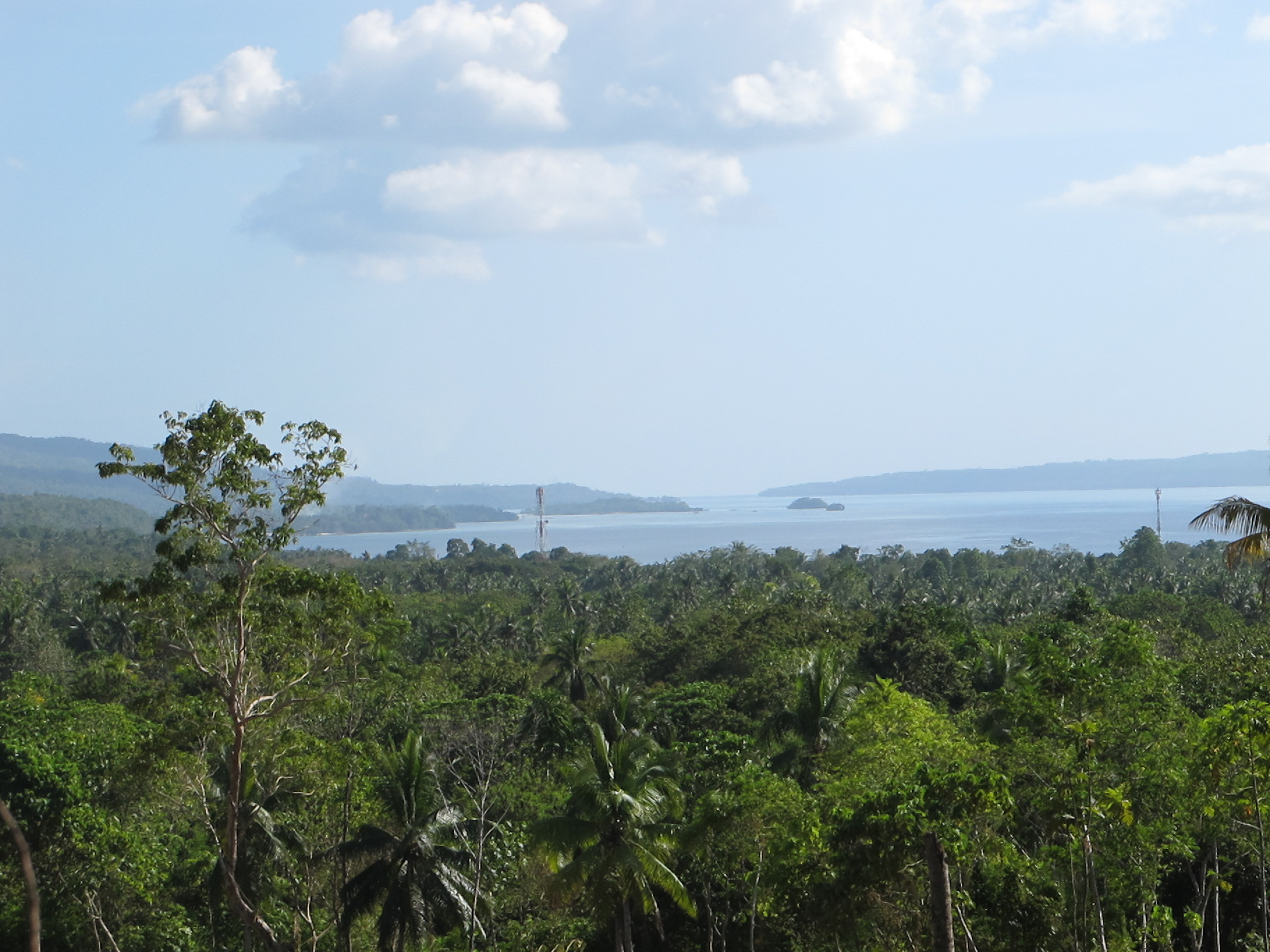 FOR SALE: Lot / Land / Farm Davao del Sur > Samal 3