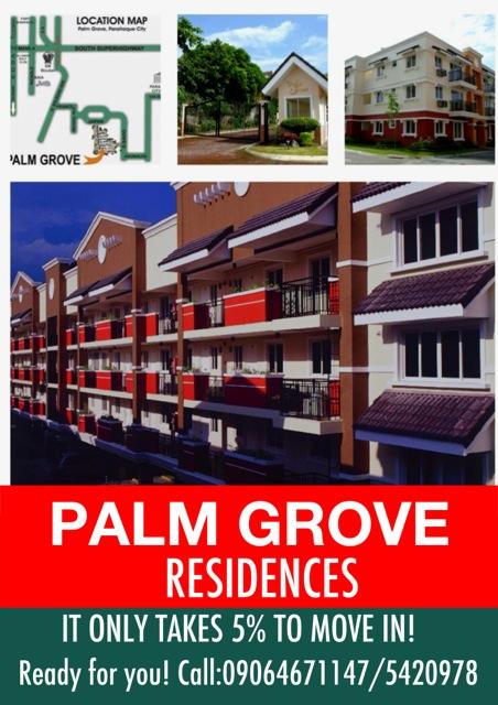 palm grove promo