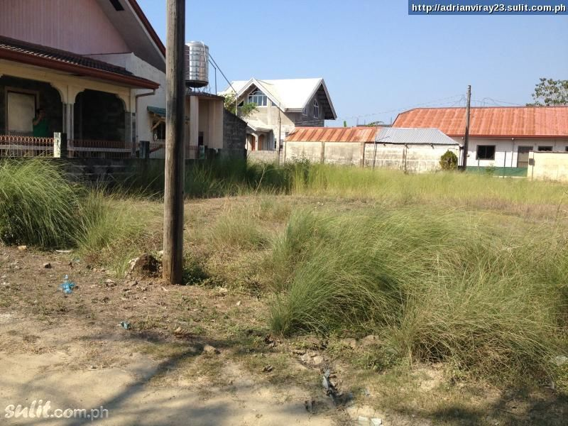 FOR SALE: Apartment / Condo / Townhouse La Union 1