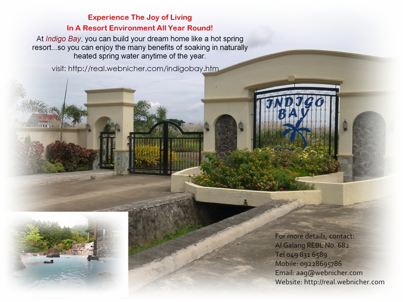 indigo bay bagong kalsada calamba city for sale lot land farm