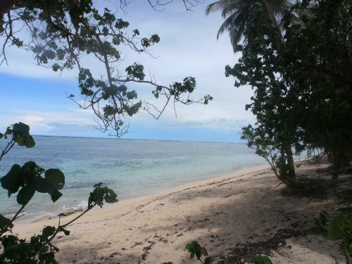 FOR SALE: Lot / Land / Farm Surigao del Norte