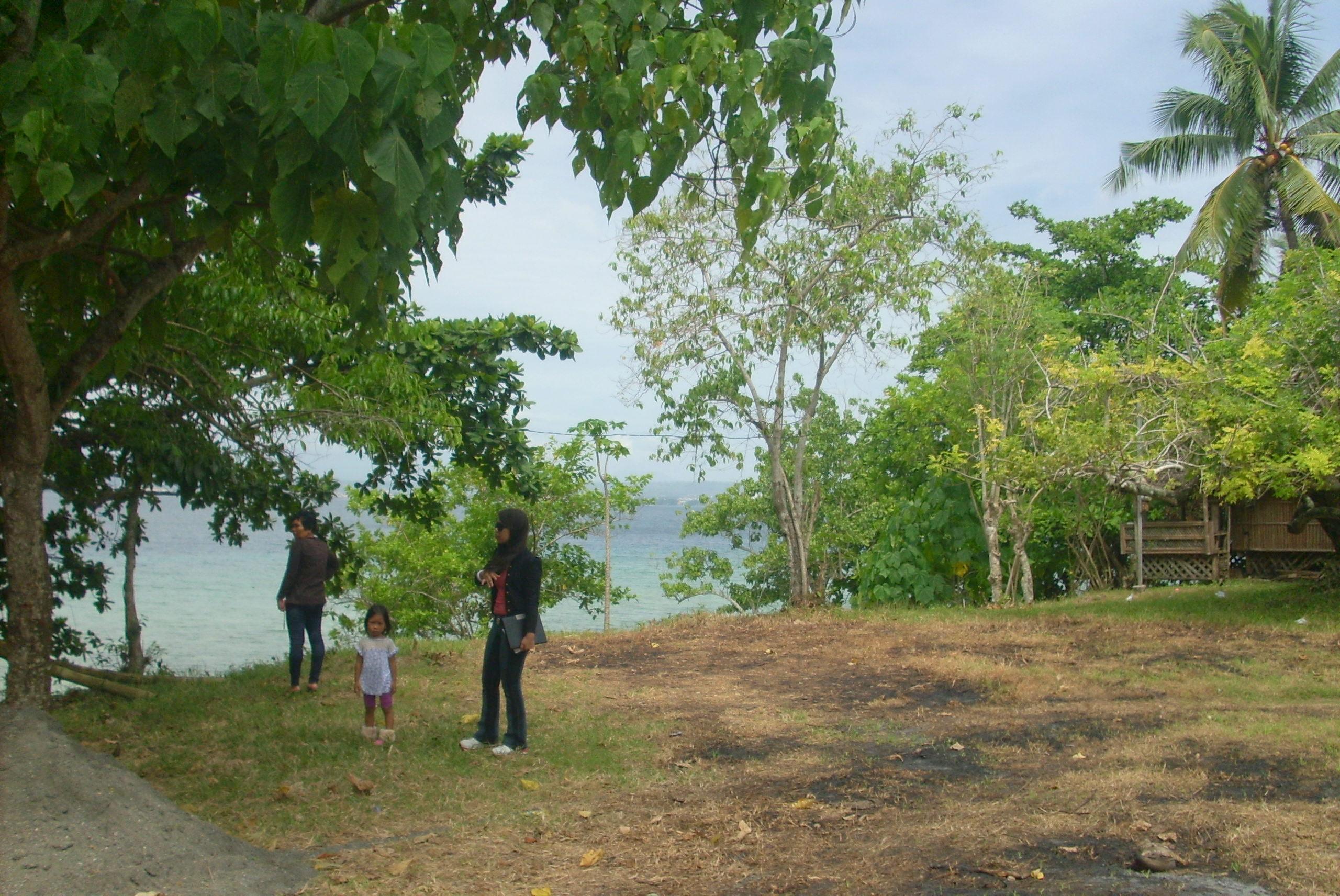 FOR SALE: Lot / Land / Farm Davao del Sur > Samal 3