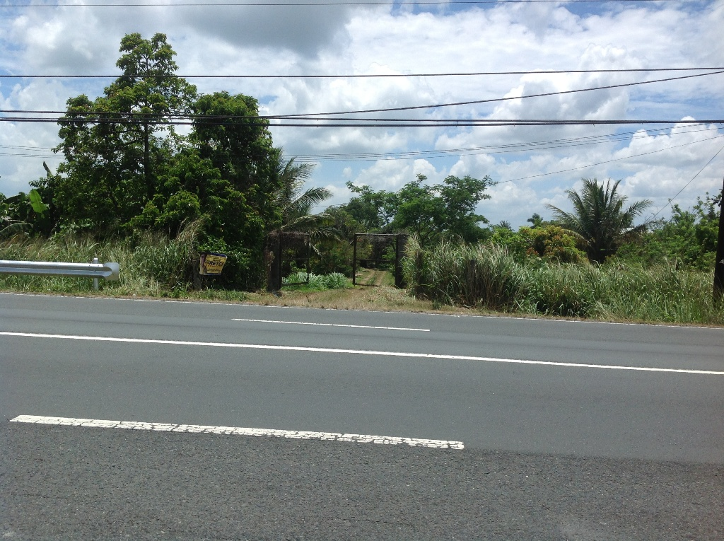 FOR SALE: Lot / Land / Farm Cavite > Silang 17