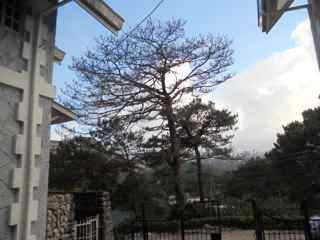 FOR SALE: Apartment / Condo / Townhouse Benguet > Baguio 17