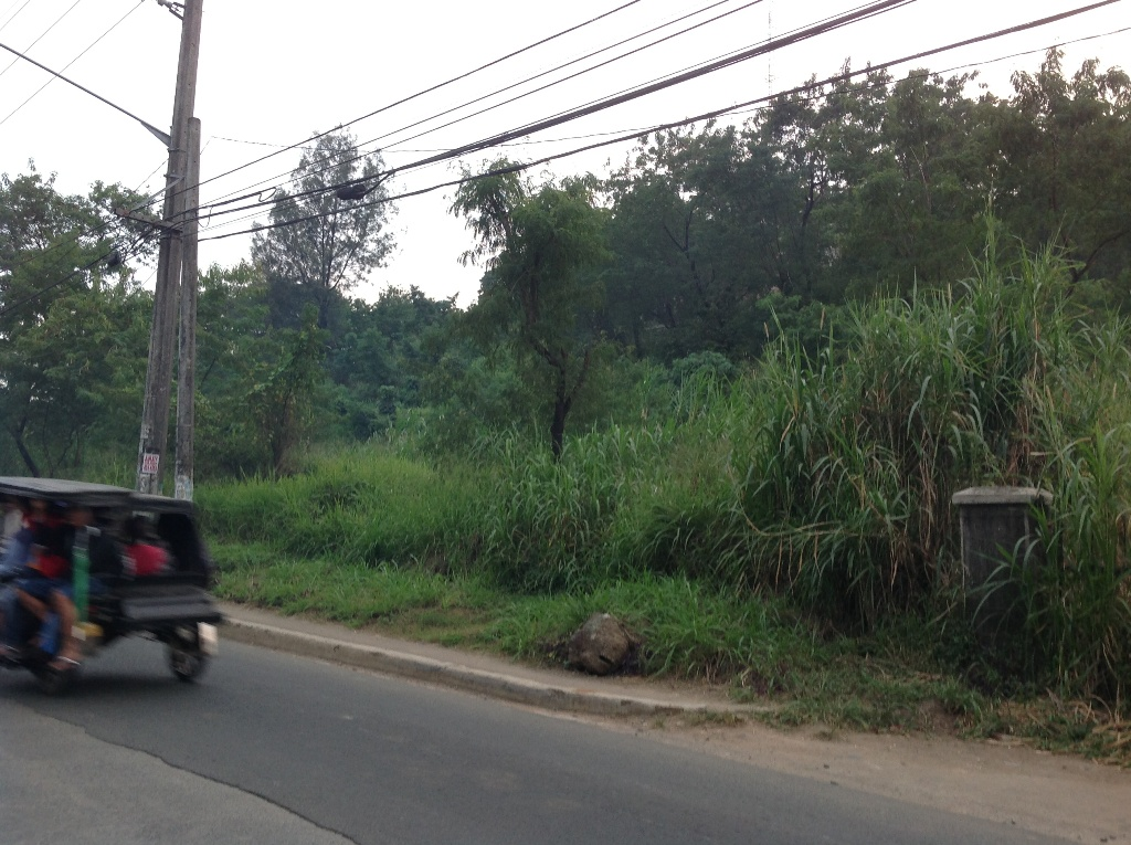 FOR SALE: Office / Commercial / Industrial Rizal > Antipolo