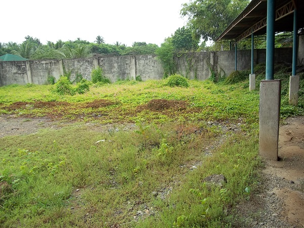 FOR SALE: Lot / Land / Farm Cebu > Cebu City 10