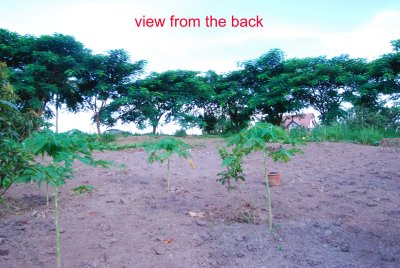 FOR SALE: Lot / Land / Farm Batangas > Batangas City 0