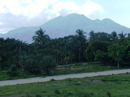 FOR SALE: Lot / Land / Farm Laguna > Calamba 4