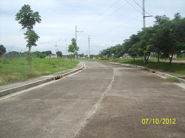 FOR SALE: Lot / Land / Farm Batangas 10
