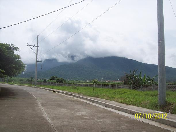 FOR SALE: Lot / Land / Farm Batangas 11