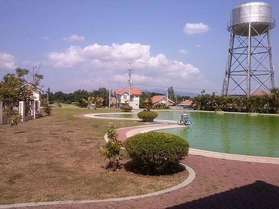 FOR SALE: Lot / Land / Farm Batangas 12