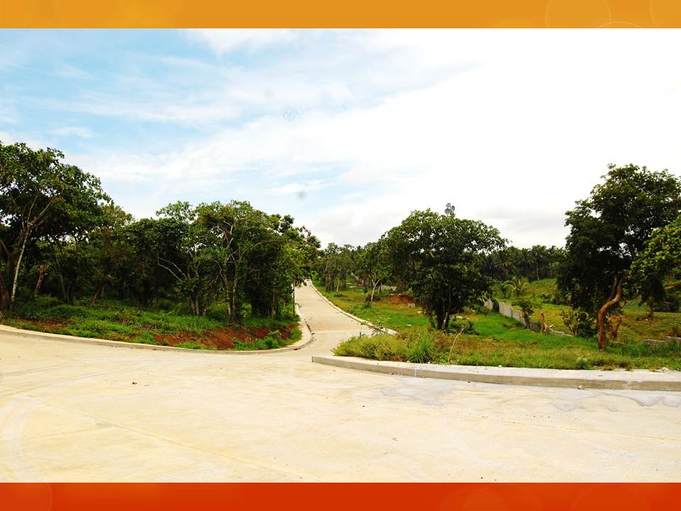 FOR SALE: Lot / Land / Farm Cavite 4