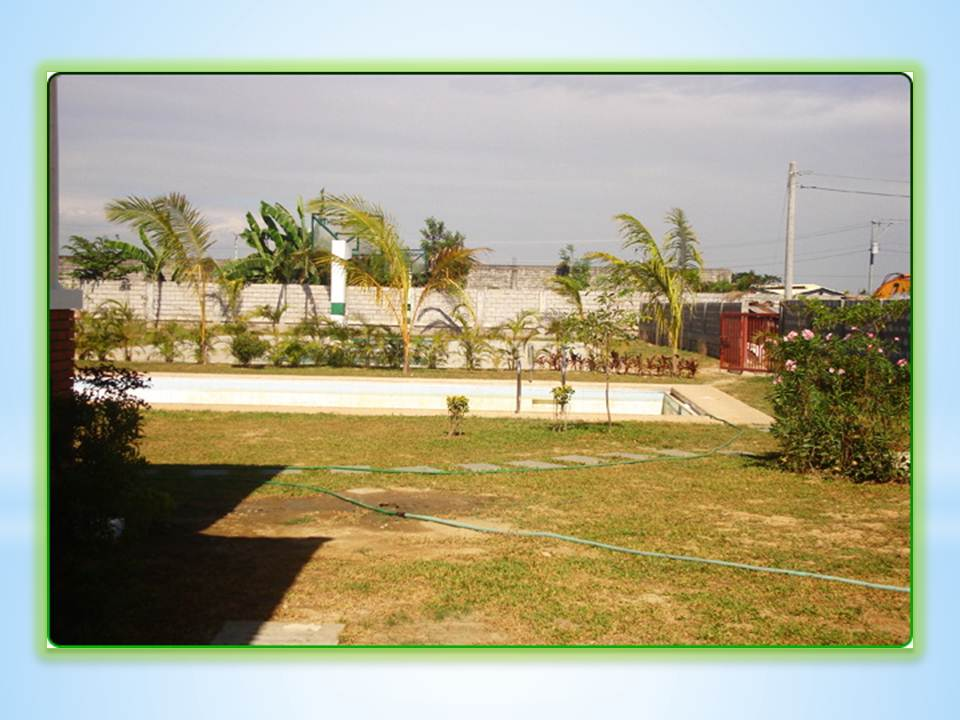 FOR SALE: Lot / Land / Farm Abra 6