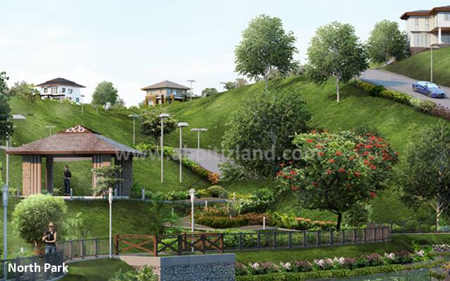 FOR SALE: Lot / Land / Farm Cebu 1
