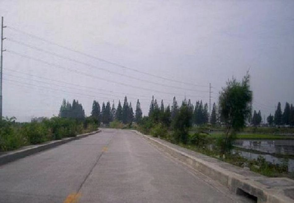FOR SALE: Lot / Land / Farm Manila Metropolitan Area > Pasig 14