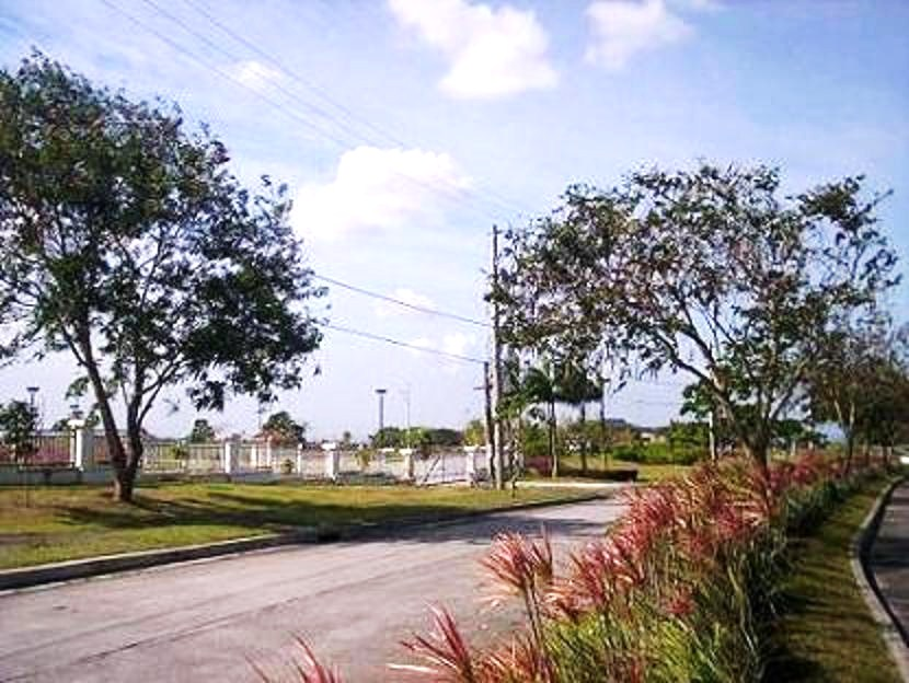 FOR SALE: Lot / Land / Farm Cavite 9