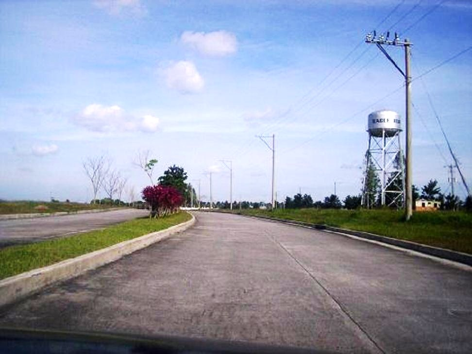 FOR SALE: Lot / Land / Farm Cavite 12