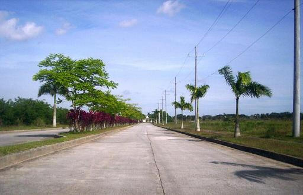 FOR SALE: Lot / Land / Farm Cavite 14