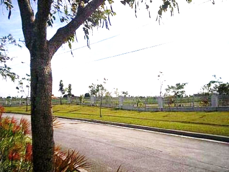 FOR SALE: Lot / Land / Farm Cavite 11