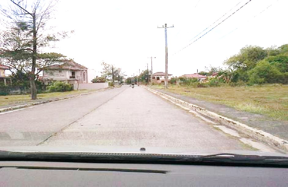 FOR SALE: Lot / Land / Farm Cavite > Bacoor 14