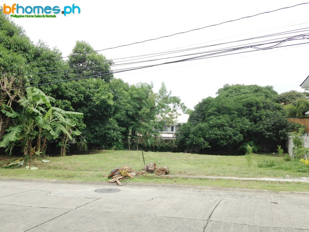 Ayala Alabang 660sqm Lot for Sale.