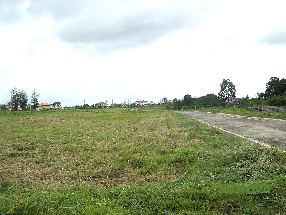 FOR SALE: Lot / Land / Farm Cavite > Dasmarinas 15